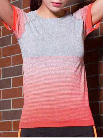 Ombre Short Sleeves Workout Gym Running T-Shirt