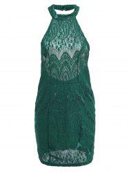 Sexy Style Halter Neck Lace Backless Sleeveless Dress For Women -