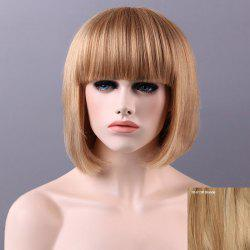 Charming Human Hair Bob Full Bang Wig For Women