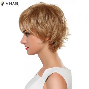 Fluffy Straight Layered Siv Hair Capless Vogue Short Real Human Hair Wig For Women - GOLDEN BROWN/BLONDE