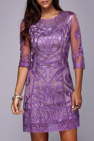 Chic Embroidered Voile See Through Mini Dress