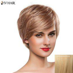 Gorgeous Women's Short Fluffy Oblique Bang Siv Human Hair Wig -