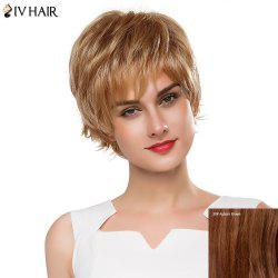 Fluffy Straight Layered Siv Hair Capless Vogue Short Real Human Hair Wig For Women - AUBURN BROWN