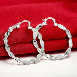 Pair of Gorgeous Twisted Circle Hoop Earrings For Women -