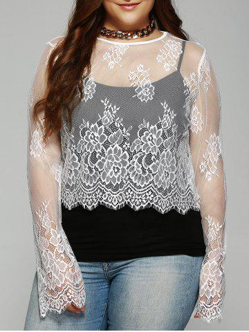Shop Plus Size Round Collar  See-Through Lace Top