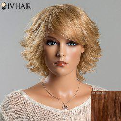 Women's Vogue Short Fluffy Tail Upwards Side Bang Siv Human Hair Wig - AUBURN BROWN