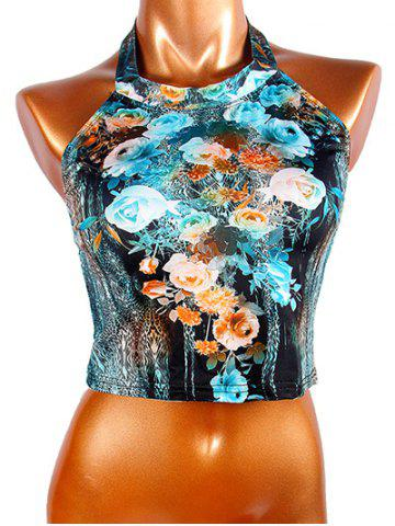 Shop Chic Women's Halter Flowers Print Crop Top
