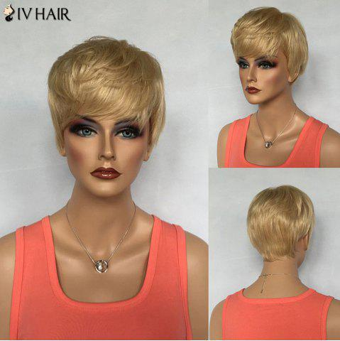 Outfit Dynamic Short Boy Cut Siv Hair Capless Fluffy Straight Layered Human Hair Wig For Women
