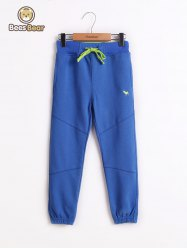 Drawstring Waist Pocket Design Boy's Sweatpants -