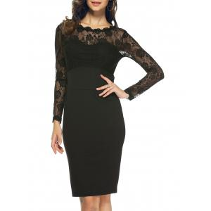 Lace Long Sleeve Sheer Sheath Dress
