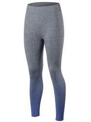 Gradient Color Sport Running Leggings - BLUE
