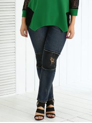 Plus Size Frayed Appliqued Black Skinny Jeans -