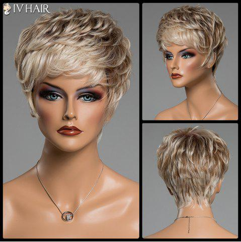 Fancy Prevailing Inclined Bang Siv Hair Capless Fluffy Curly Short Human Hair Wig