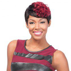 Short Curly Wine Red Highlight Heat Resistant Fiber Wig