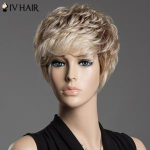 Spiffy Assorted Color Short Siv Hair Fluffy Curly Capless Human Hair Wig -