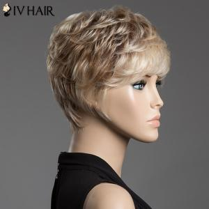 Spiffy Assorted Color Short Siv Hair Fluffy Curly Capless Human Hair Wig - COLORMIX