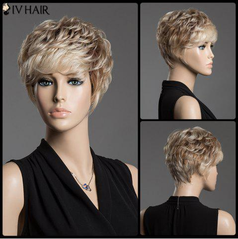 Sale Spiffy Assorted Color Short Siv Hair Fluffy Curly Capless Human Hair Wig COLORMIX