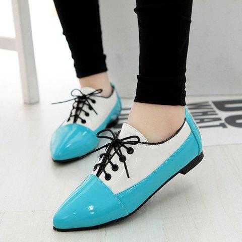 Buy Point Toe Color Block Flat Shoes - 41 BLUE Mobile