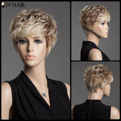 Spiffy Assorted Color Short Siv Hair Fluffy Curly Capless Human Hair Wig