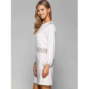 Openwork Lace Long Sleeve Straight Dress -