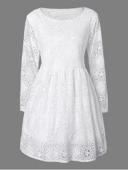 Lace Long Sleeve Openwork Mini Dress -