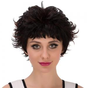Short Neat Bang Layered Highlight Straight Synthetic Wig - COLORMIX
