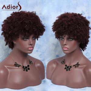Fluffy Short Afro Curly Full Bang Synthetic Capless Wig