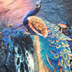 Southeast Asia Peacock and Starry Sky Print Long Scarf -