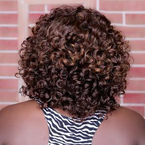 Adiors Long Highlight Curly Synthetic Wig - COLORMIX