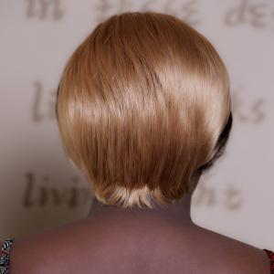 Adiors Short Straight Double Color Bob Synthetic Wig - COLORMIX
