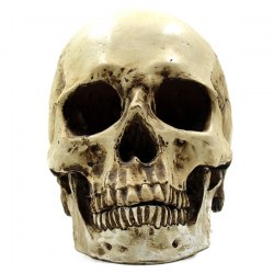 Horror Skull Prop Halloween Party Decoration Supply - LIGHT YELLOW
