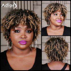 Adiors Short Highlight Neat Bang Curly Synthetic Wig