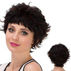 Short Neat Bang Layered Highlight Straight Synthetic Wig