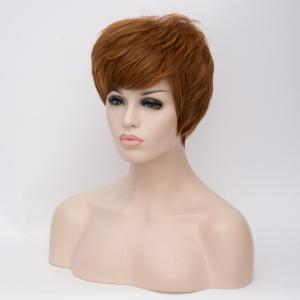 Short Fluffy Full Bang Straight Brown Mixed Synthetic Wig - COLORMIX
