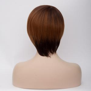 Short Mixed Color Side Bang Straight Synthetic Wig -
