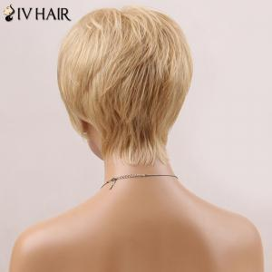 Handsome Short Fluffy Straight Side Bang Siv Human Hair Wig - AUBURN BROWN