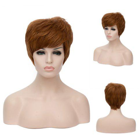 Fashion Short Fluffy Full Bang Straight Brown Mixed Synthetic Wig COLORMIX