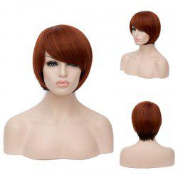 Prevailing Short Side Bang Straight Mixed Color Synthetic Wig