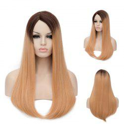 Ombre Long Side Parting Tail Adduction Straight Synthetic Wig
