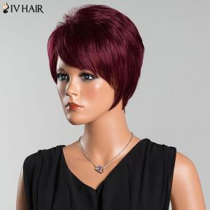 Siv Short Oblique Bang Pixie Straight Human Hair Wig - WINE RED