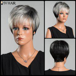 Siv Pixie Straight Short Side Bang Human Hair Wig - COLORMIX