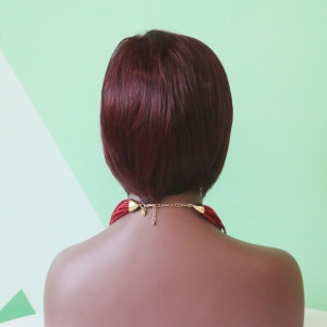 Mixed Color Short Straight Side Parting Synthetic Wig -