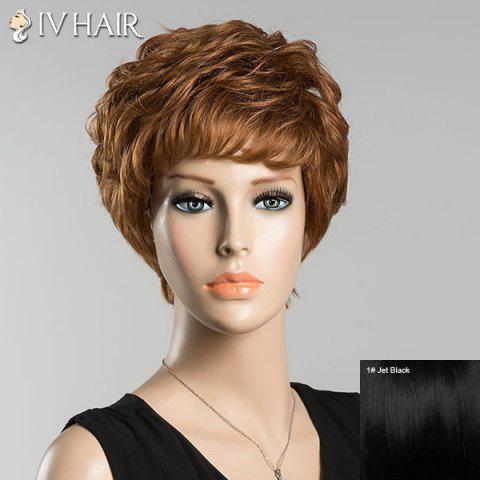 Hot Short Bouncy Full Bang Curly Siv Human Hair Wig