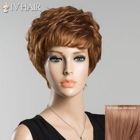 Short Bouncy Full Bang Curly Siv Human Hair Wig - Brown With Blonde