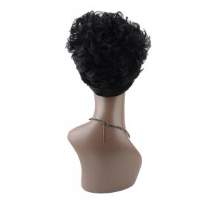 Short Neat Bang Curly Synthetic Capless Wig - COLORMIX