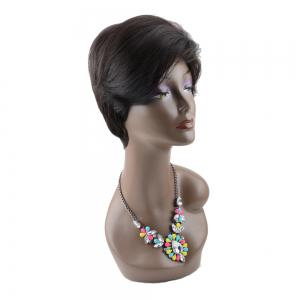 Short Straight Inclined Bang Spiffy Heat Resistant Fiber Wig - BLACK