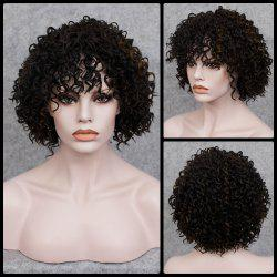 Short Full Bang Curly  Mixed Color Synthetic Wig