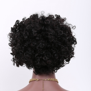 Short Side Bang Afro Curly Prevailing Synthetic Hair Wig -