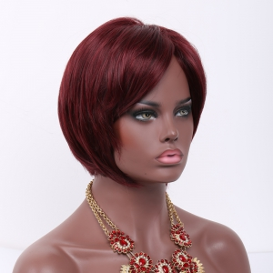Mixed Color Short Straight Side Bang Synthetic Wig -