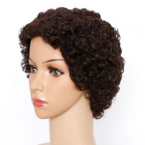 Spiffy Short Curly Synthetic Wig - BROWN